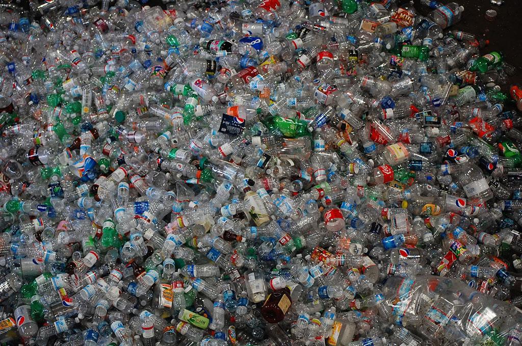 Bottles Waste